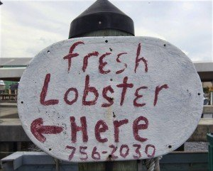 Fresh Lobster Sold Here