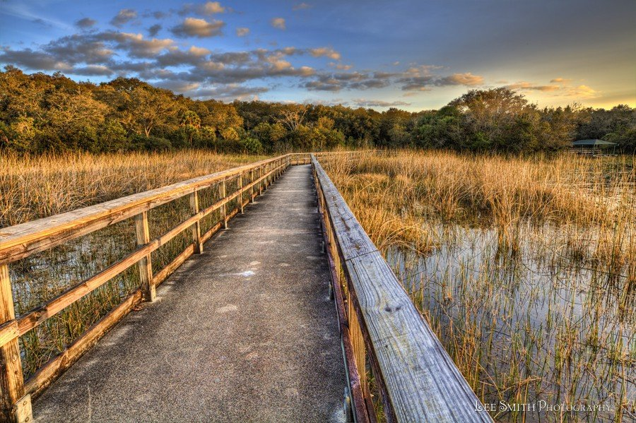 MG 3205 6 7 tonemapped A Walk Way over a Wetlands   South Florida