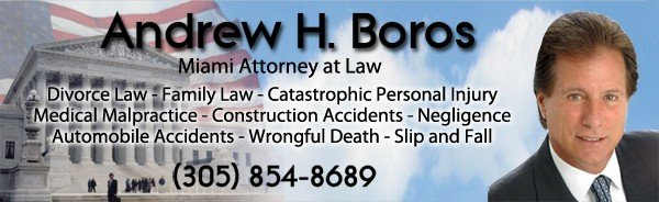 AndrewBoros2 Miami Attorney for Divorce, Family Law, Personal Injury, Wrongful Death