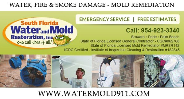 MoldWater9111 How Do we Know If we Have Mold?   Mold Remediation by WaterMold911