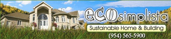 EcoSimplista header Why use toxic chemicals to clean your home and or business?