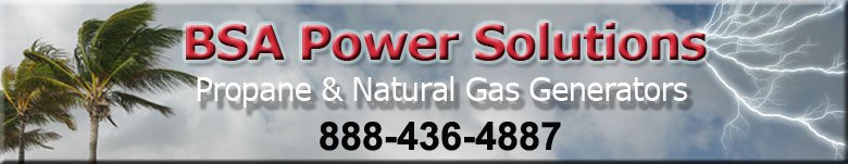 BSAPowerSolution Ft Lauderdale Briggs  Stratton 25kW Generators Propane, Natural Gas